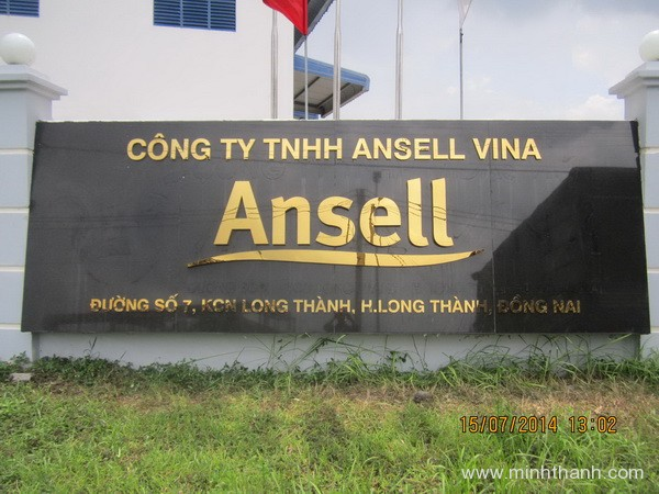 Chữ nổi inox và chữ nổi bảng hiệu cho Ansell / KCN